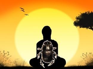 meditation dung beetle | Chelsea Scrolls