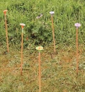 hum sticks