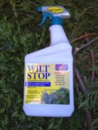Wilt Stop. Keep your xmas tree alive the way the ancients did, with this bottle of water. Now in a spray!