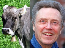 cowbell and christopher walken