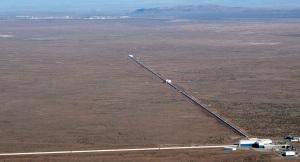 LIGO | Chelsea Scrolls