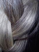 gray hair | Chelsea Scrolls